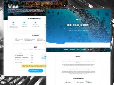 Travel and Adventure ✈️🏝 blue proposal custom landing vacation adventure travel jubel
