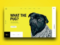 Whats the pug - landingpage
