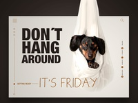 It´s Friday Landingpage