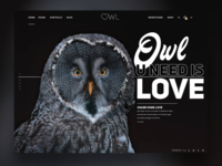 Owl you need is Love ❤️💘 😀 landing page