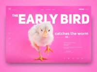 The early bird catches the worm - landing page