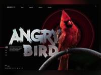Angry Bird Landingpage