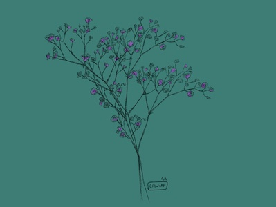 - Lavender ipadpro pencil design illustrator 2d illustration illustration