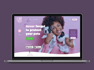 Website for pets owners agency web app layout creative design