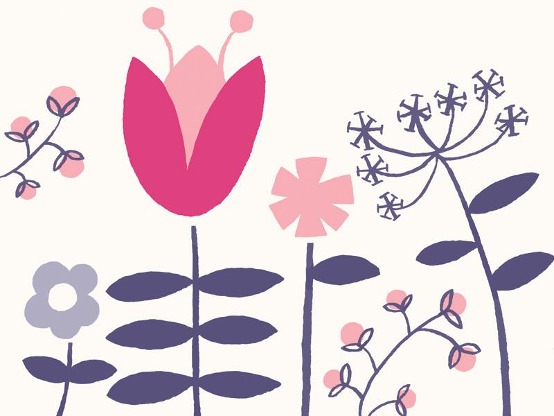 Flowers flowers pink blue cream illustration