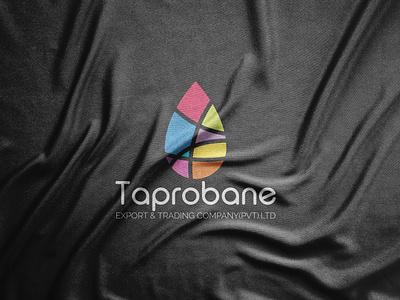 Taprobane logo design 2021 trend 2021 logo elegant flat design geometric graphics graphic design vector illustration vector art symbol paper modern minimalist minimalism logo designer logos circle logo mark logotype abstract