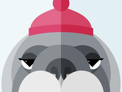 Walrus Illustration / Close-up symmetrical geometric beanie nostrils nose illustration tusks hat animal walrus