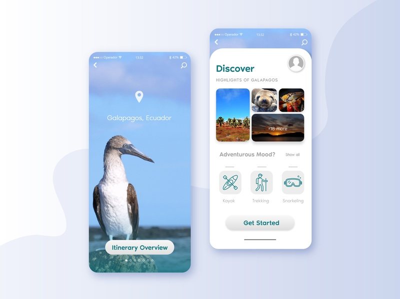 Discover Galapagos Islands' Wonders galapagos traveling travel app trip planner travel app vector ux ui app design ui design graphic design