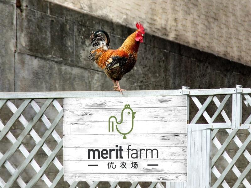 Merit Farm graphic designer marketing agency farmer brand identity logodesign visual identity art direction logo identity design brand branding brand design design