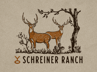 YO Axis Shirt Design procreate illustration texas ranch ranch hunter hunting texas austin brand logo deer axis deer axis identity branding