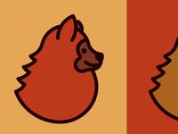 Copper the Pomeranian