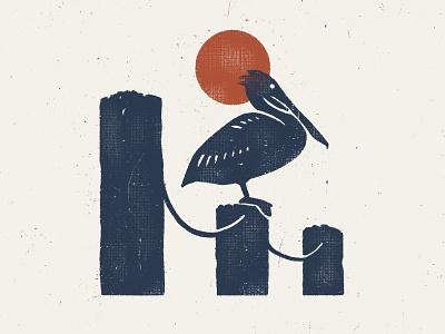 Posted Up texture illustration wildlife nationalparks florida alabama beach fishing bird pelican