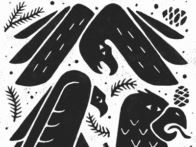 Birds of Prey illustration wings hawk pinecone pine bird bold doodle drawing minimal eagles