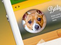 Pet App