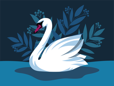 White Swan artwork vector art vector digitalillustration nature white illustration cigno swan