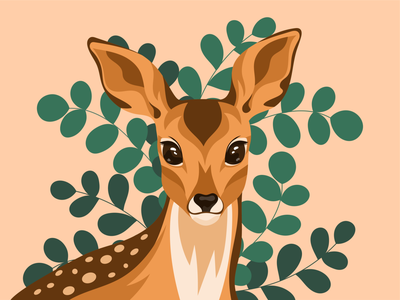 Fawn nature artwork graphic vector illustration vector animal illustration illustration animal character animal fawn