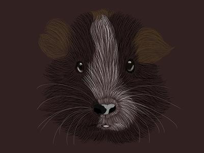 An illustration of my guinea pig Sonny