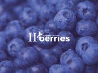 Berries Marca