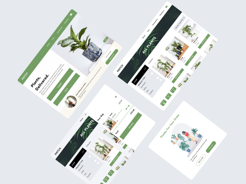 Plant Website UI Design typogaphy dribbble plant branding visual ui design website