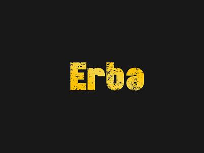 Erba design branding business identity brand identity typography vector logo illustration creative