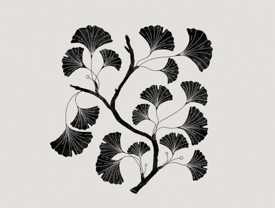 Black leaves botanical botanic black graphics illustration art leaves logo leaves plants illustration