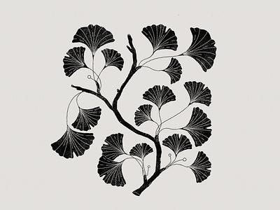 Black leaves botanical botanic black graphics illustration art leaves logo leaves plants illustration