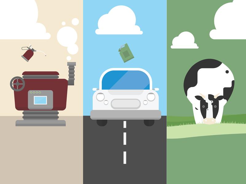 Abergain High Sugar Grass   Visual Design high sugar grass milk cows grass design visual design vector illustration animation 2d animation