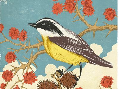 Three of a kind - Bem-te-vi illustration nature flower drawing flowers birds