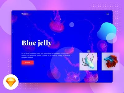 Blue Jelly UI - Free Sketch file