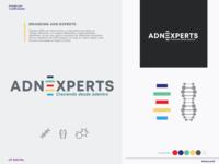 ADN EXPERTS icon vector logo branding and identity branding