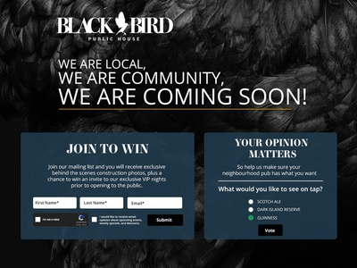 Black Bird Public House  web site landing page pre open temporary home community local poll email gold blue black home