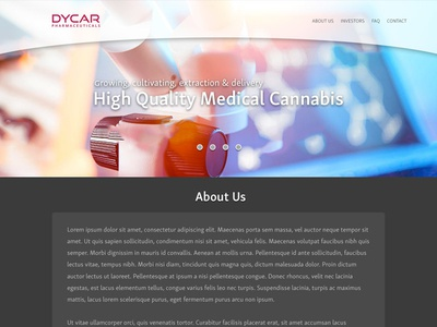 Dycar website landingpage homepage delivery extraction cultivating growing cannabis medical quality high