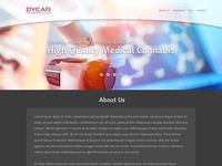 Dycar website