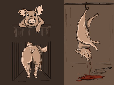 Pig animal rights meat slaughter house pig