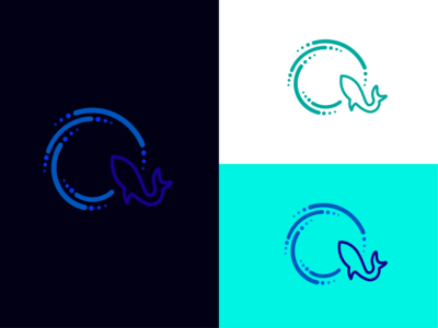 Q Letter + Shark letter ocean sea q logo q shark q letter design logo illustration