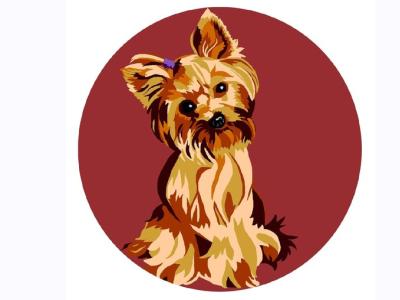 little dog illustration