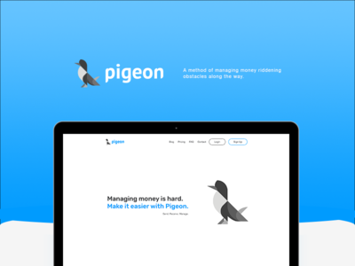 Pigeon Concept