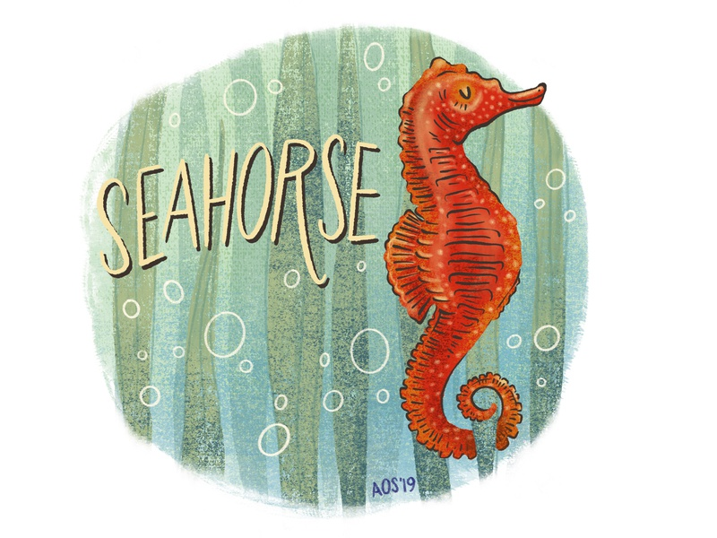 S is for Seahorse hand lettering hand drawn sketch series drawing animal alphabet animal doodle nature illustration illustration nature ocean life seahorse