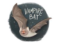 V is for Vampire Bat animal illustration vampire nature animal alphabet animal doodle hand drawn illustration drawing vampire bat bat