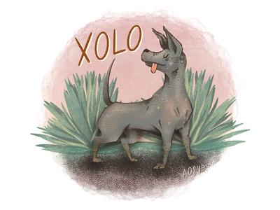 X is for Xoloitzcuintli illustration series xoloitzcuintli dog xolo animal alphabet hand drawn hand doodle illustrator drawing illustration