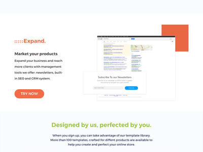 eCommerce Landing Page eshop estore web design landing promo page ecommerce landing page