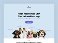 DoggoDNA - DNA tests for dogs