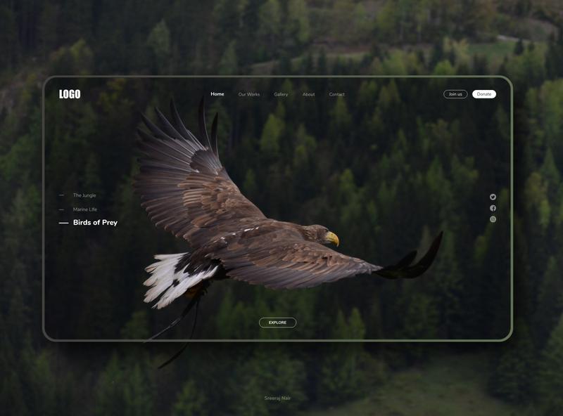 Landing Page Design dailyui interaction design minimal eagle birds birds of prey conservation wildlife ux ui website daily 100 challenge landing page design