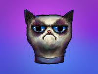 Grumpy Cat Illustration