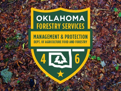 OKLAHOMA FORESTRY SERVICES PATCH okie oklahoma monowidth minimal mark logo patch thicklines