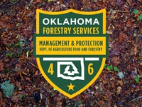 OKLAHOMA FORESTRY SERVICES PATCH