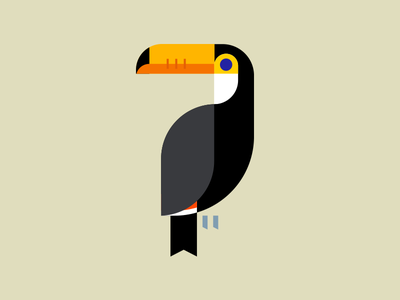 Toucan minimal bird bird icon bird illustration bird toucan