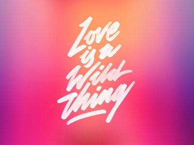 Love is a Wild Thing