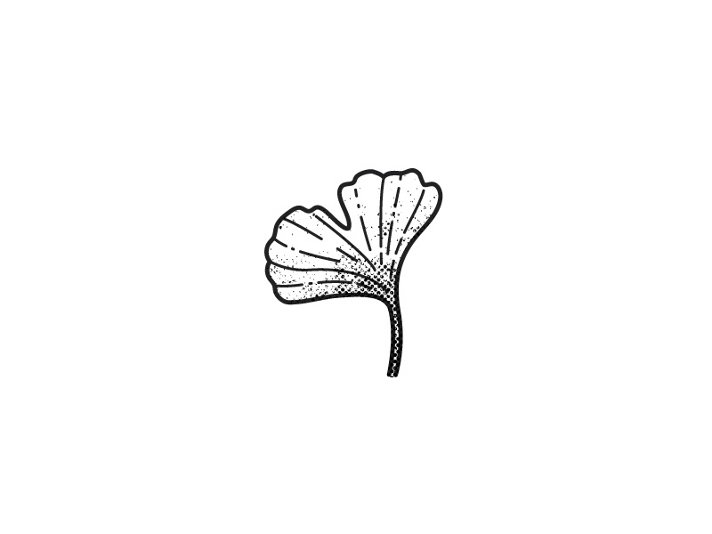 Ginko Leaf ink tattoo zen nature simple texture illustration ginko leaf