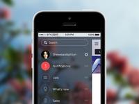 iOS7 Menu Concept